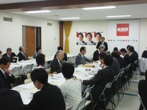 11.11党;厚労 予算・税制等に関する政策懇談会 (3)