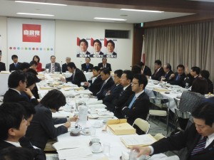 h26.1.30合同部会厚労大臣が入り医療法改正の議論②