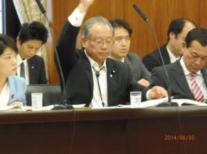 0605厚生労働委員会 (28)