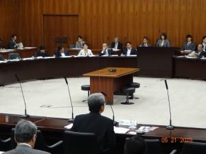 厚生労働委員会 参考人中川副会長
