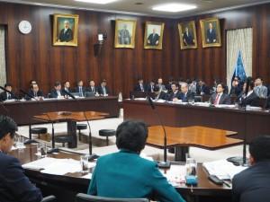 参議院国際経済・外交に関する調査会